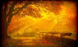 Autumn Mist Wallpaper__yvt2 copy